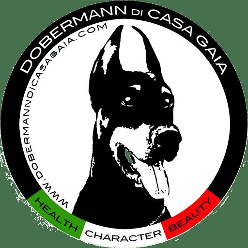 Allevamento Dobermann di Casa Gaia